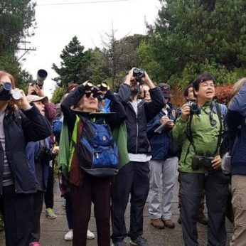 Birders' Clubs and Ornithological Associations in Colombia