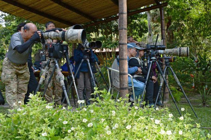 Bird photographers at Tinamú Birding Nature Reserve